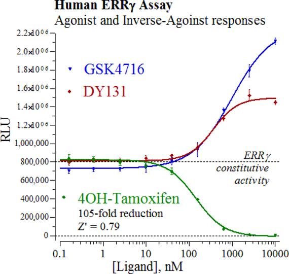 estrogen receptor assay kit Human er alpha / estrogen receptor elisa kit (sandwich elisa) - ls-f26845 elisa and assay kits all kits mouse/human er alpha / estrogen receptor elisa kit.